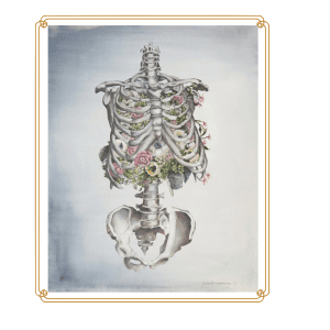 framed skeleton